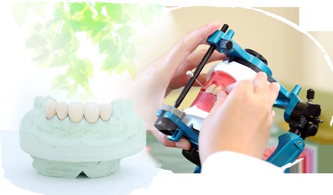 歯科技工士会概要